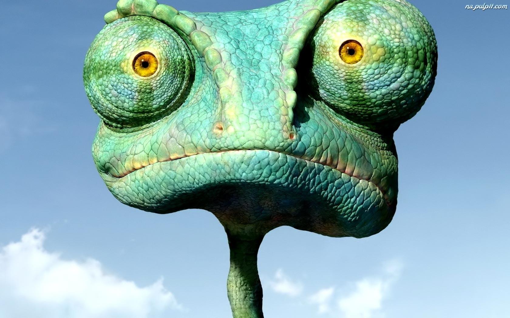 Śmieszny kameleon